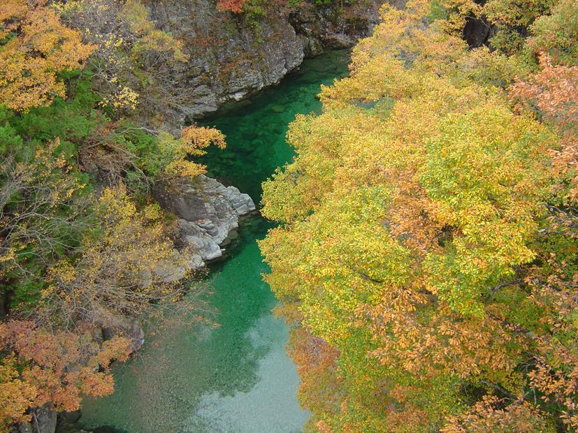 Lindos contrastes de Tsukechikyo em Gifu