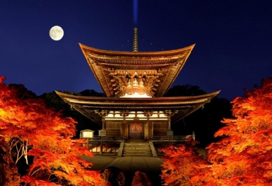 Ishiyamadera Ilumination